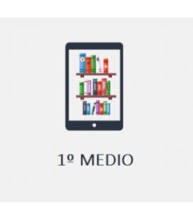 Instituto O´Higgins: 1º Medio