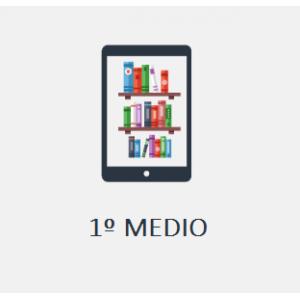 Colegio Almenar del Maipo: 1º Medio